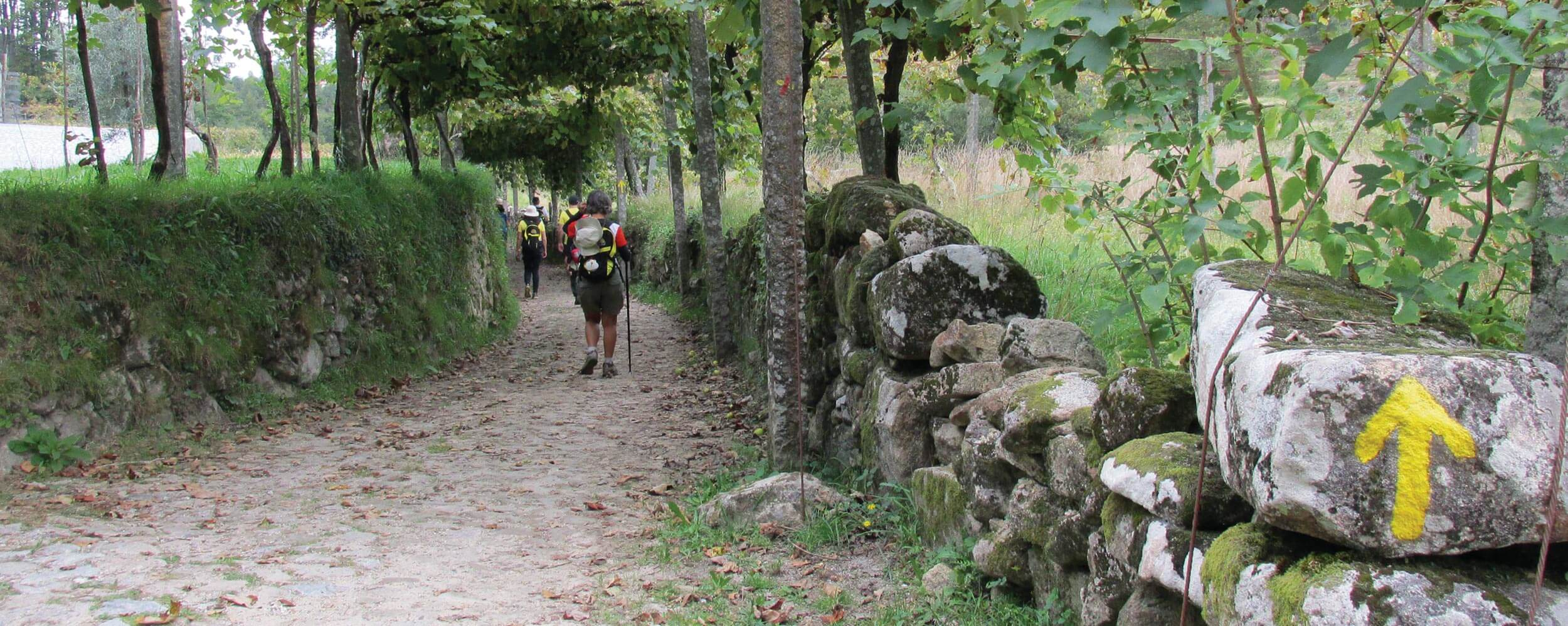 One of Europe's oldest pilgrimage routes