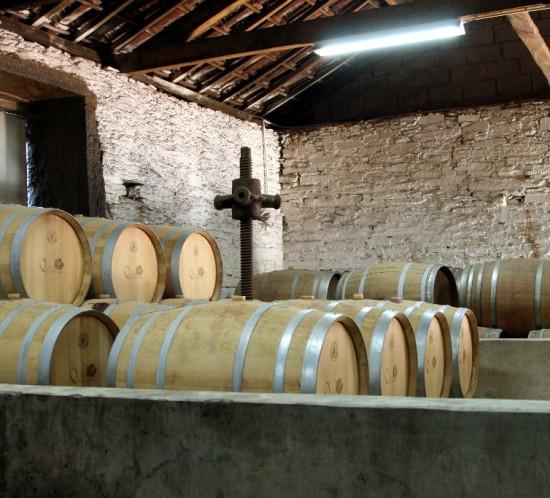 Douro's Vine Terraces#03