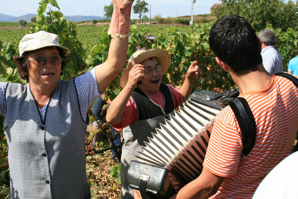 Grape pickers dancing amid the grape vines