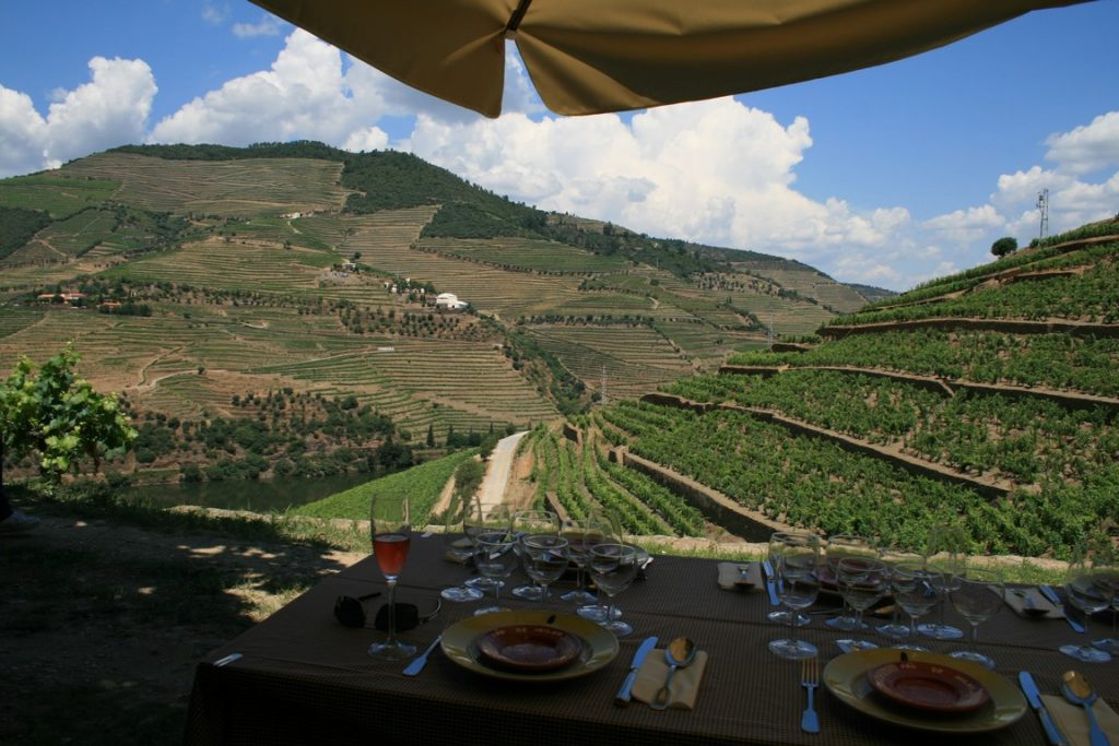 Picnic with a view to Douro River