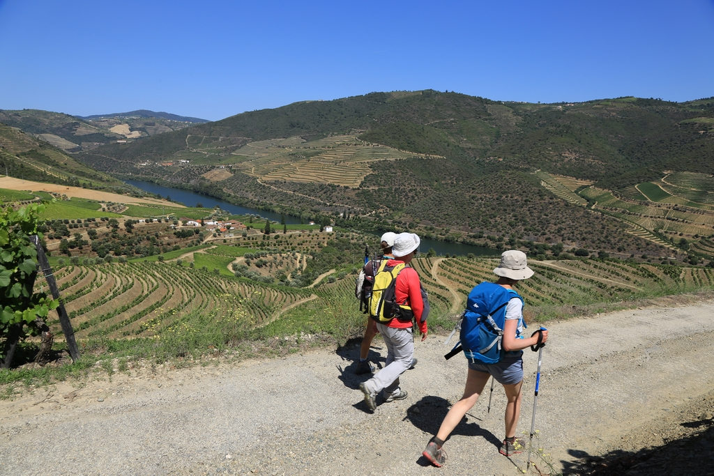 Walking and Wine tour