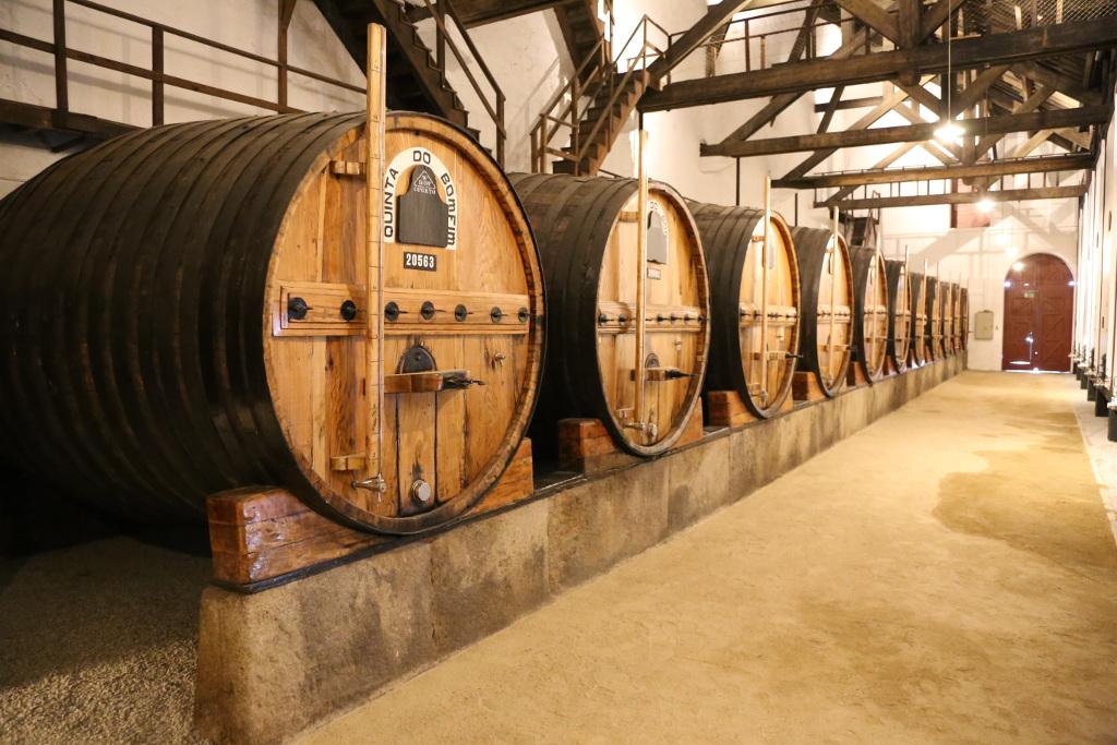 Oak wine barrels, Douro Valley