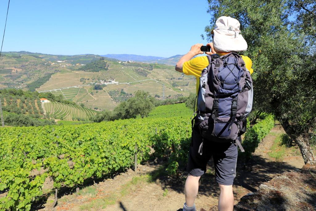 Self-guided walking tours in Douro wine region