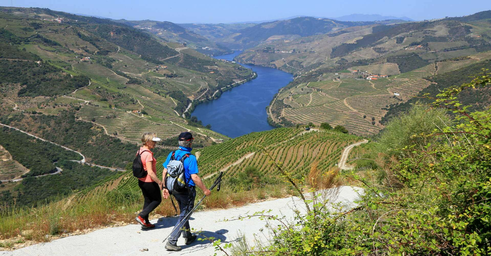 Heart and Soul of the Douro Wine Region
