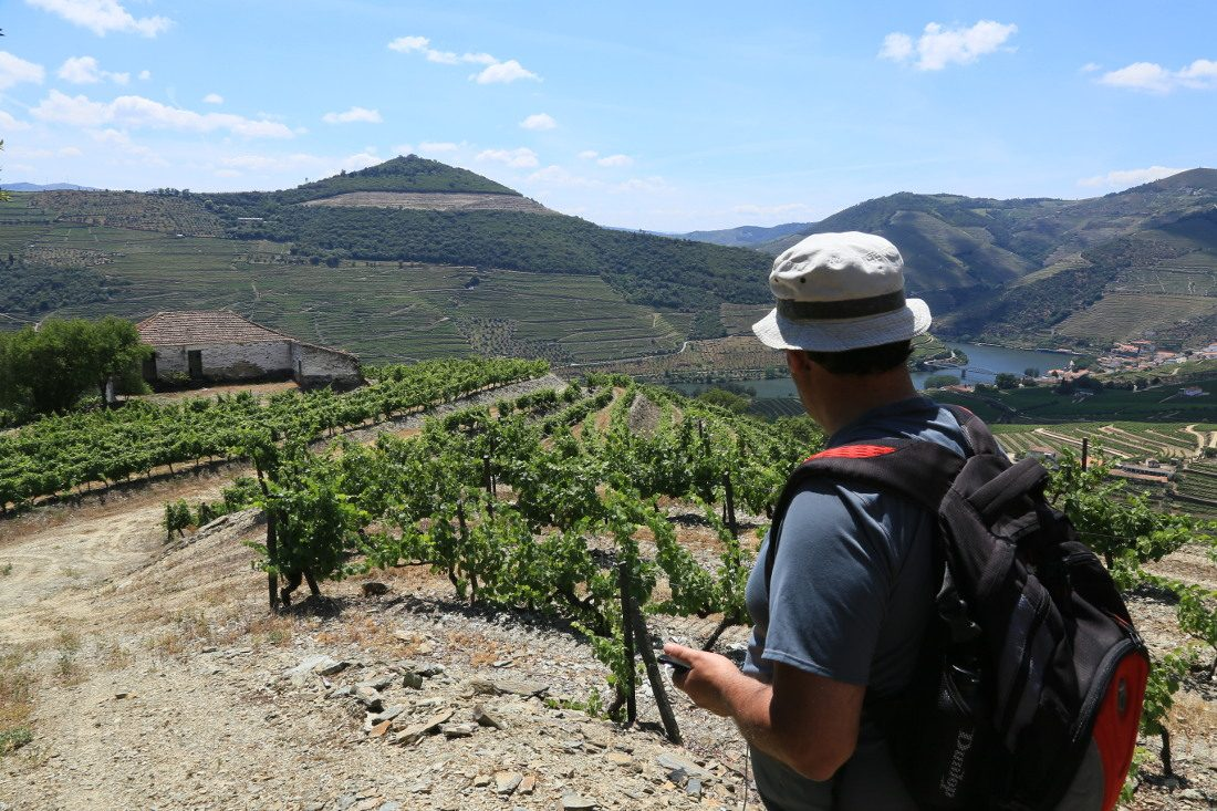 full day guided walk in Douro