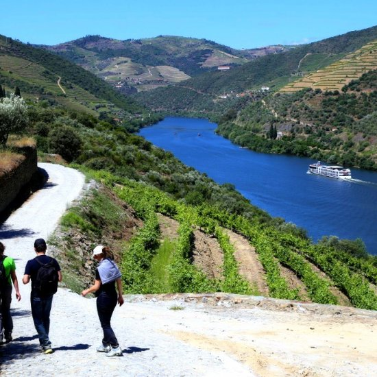Douro Valley guided walking tour