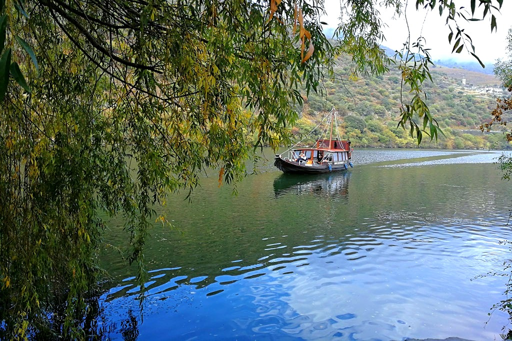 Self-guided walking holidays in Douro Valley